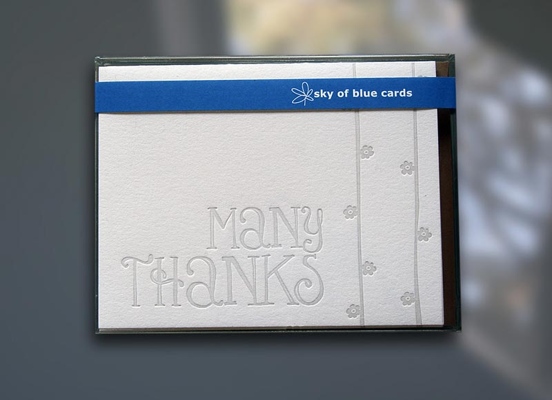 Many Thanks Note Cards
